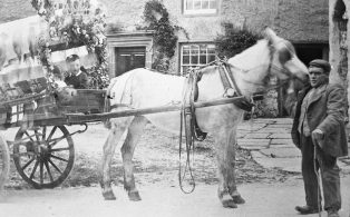 Horse and Trap Dressed for an Event at Austwick