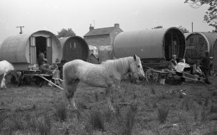 Horse With Caravans