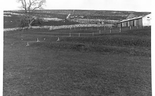 Photograph of Lynchets at Dubcote
