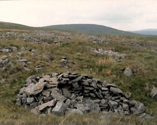 Photograph of Fell Close Showing Grouse Butt