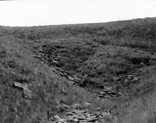 Photograph of Old Quarry on Fell Close