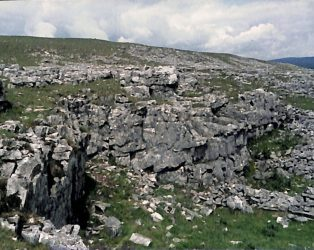 Photograph of Old Quarry Near Beecroft, Horton