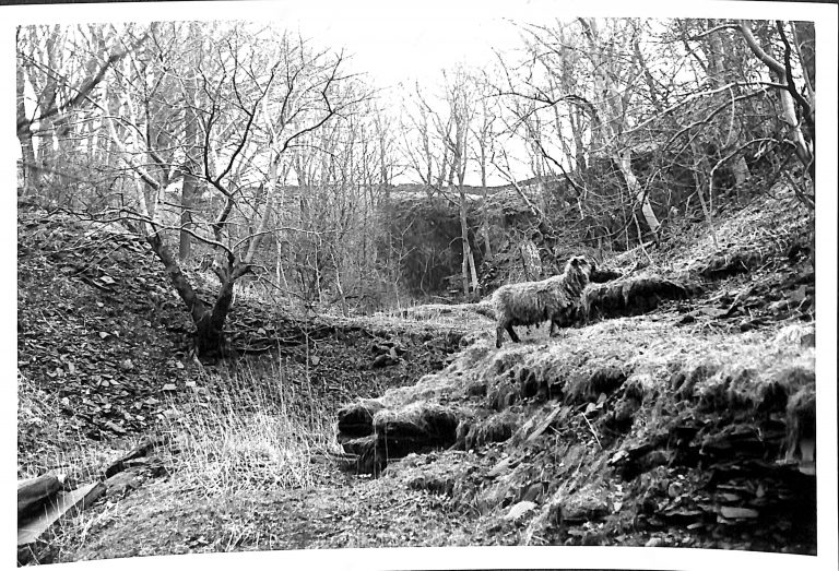 Photograph of Stone Quarry at Studfold